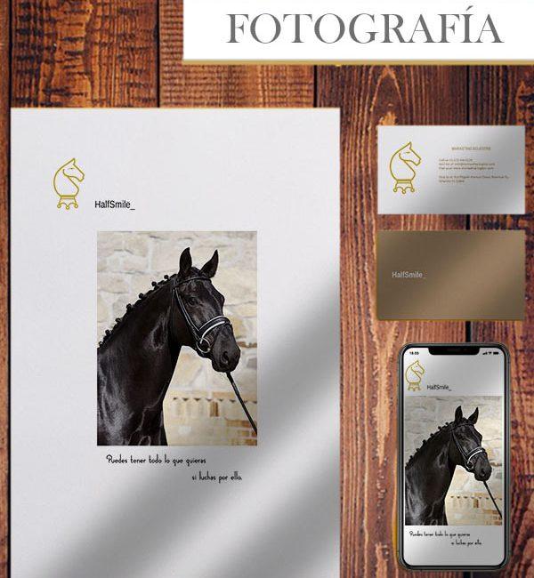 imagen publicitaria caballos marketing ecuestre